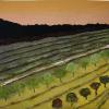 "Vineyard cattim_107_11 40"" x 40""  (101cm x 101cm) $200.00"