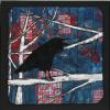 "One Raven in a Birch Tree cattim_589_18 10"" x 10"" (25.5cm x 25.5cm) SOLD"